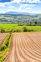 Drilled fields, Wooler & the Cheviots