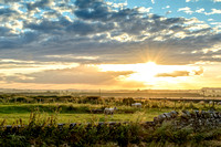 "Northumberland sunset ""northumbrian images"" beadnell chathill sheep"